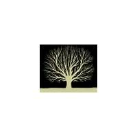 What is the best fractal planner?