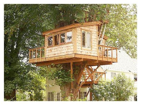 Free Blueprints for Treehouses