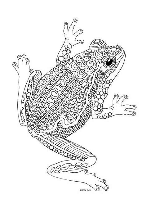 Frosch Ausmalbild Erwachsene