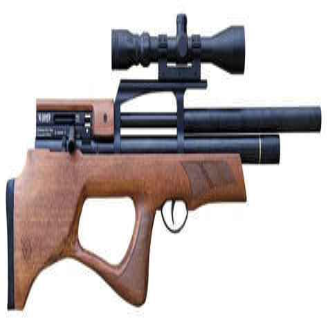 Gamo Air Rifle Shotgun