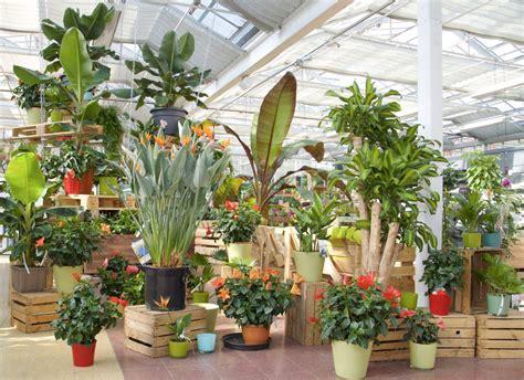 Gartencenter In Der Nähe