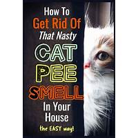 Get rid of cat urine stains & smell from your home right now! reviews