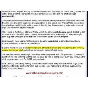Get rid of stink bugs permanently stink bug infestation guide compare