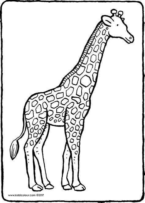 Giraffe Ausmalbilder Malvorlagen