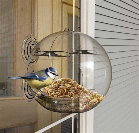 Globe window bird feeder Image
