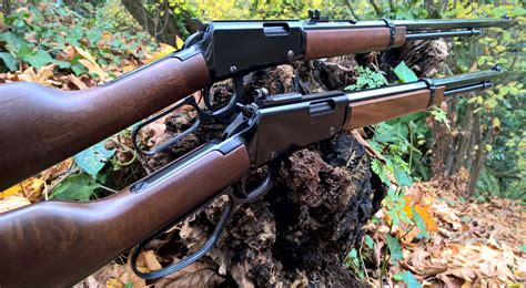 Good 22 Rifle For Small Game