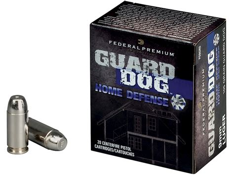 Good 9mm Ammo For Home Defense