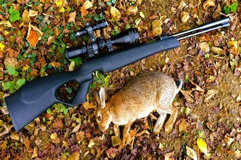 Good Rabbit Hunting Air Rifle
