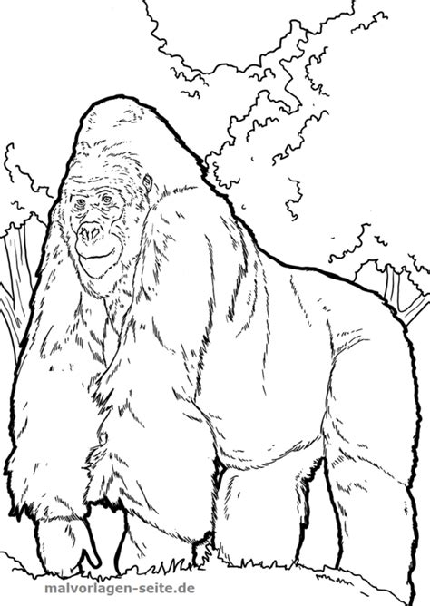 Gorilla Malvorlage