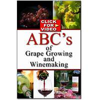 Buying grape growing and wine making the total wine making system