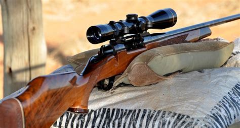 Guide To Hunting Rifles