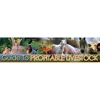 Guide to guide to profitable livestock