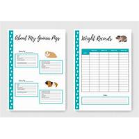 Guinea pig care made easy discount