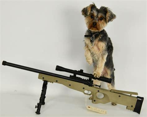 Gun Collectors Dream Auction 8 - Global Auction Guide