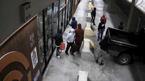 Gun-Store Gun Store Robbery Dog.