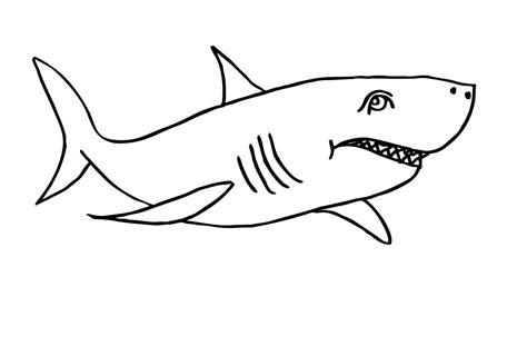 Haifisch Malvorlage