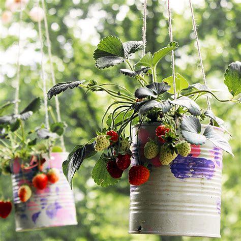 Hanging strawberry planters Image