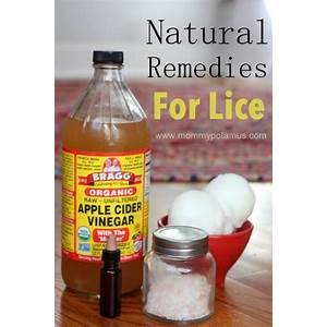 Coupon for head lice treatment natural home remedy