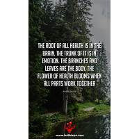 Guide to healthy mind fit body at the root of weight loss