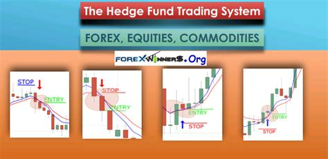 Hedge Fund Forex Trading Strategy