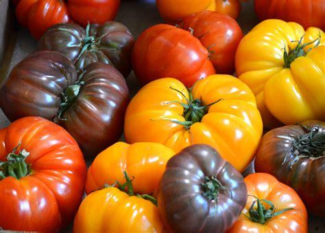 Heirloom Tomato Watermelon Wallpaper Rainbow Find Free HD for Desktop [freshlhys.tk]