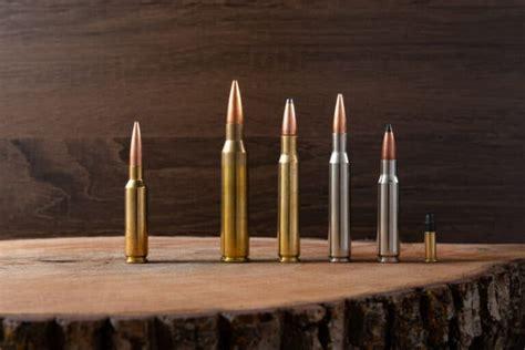 Hog Hunting Rifle Calibers