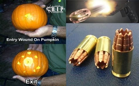Hollow Points Vs Regular Bullets