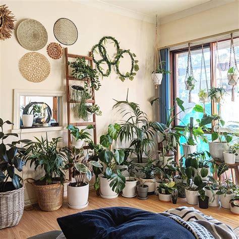 Home Decor Plant Home Decorators Catalog Best Ideas of Home Decor and Design [homedecoratorscatalog.us]