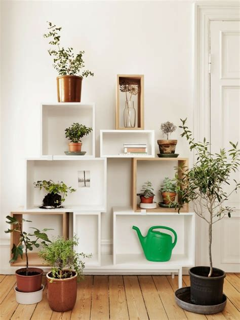 Home Decor With Indoor Plants Home Decorators Catalog Best Ideas of Home Decor and Design [homedecoratorscatalog.us]