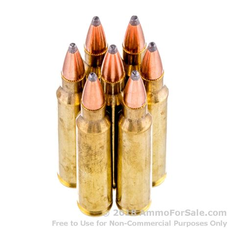Hornady 223 55gr Training Ammo Review