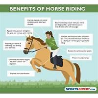 Horseback riding guide new professional sales copy free tutorials