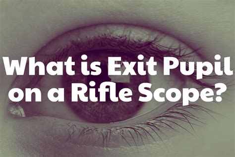 How Does Exit Pupil Effect A Rifle Scope