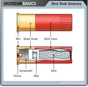 How Does Shotgun Ammo Work