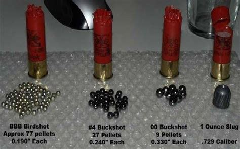 How Many Pellets In Shotgun Shell