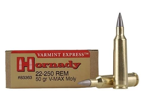 How Many Shells Will A 22 250 Rifle Hold