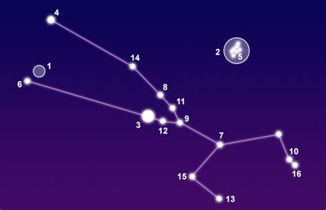 Taurus-Question How Many Stars In The Taurus Constellation.