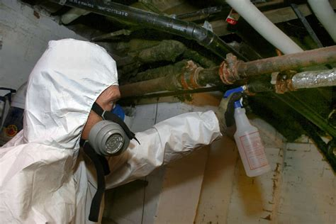 How Much To Remove An Asbestos Make Your Own Beautiful  HD Wallpapers, Images Over 1000+ [ralydesign.ml]
