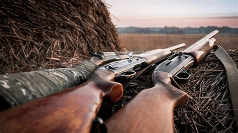 How To Choose A Shotgun For Hunting