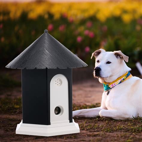how to control my dogs barking Image