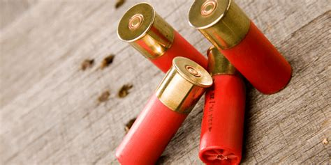 How To Dispose Of Corroded Shotgun Shells
