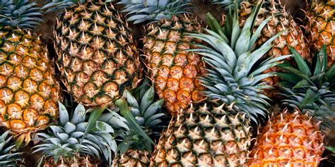 How To Pick A Pineapple Watermelon Wallpaper Rainbow Find Free HD for Desktop [freshlhys.tk]