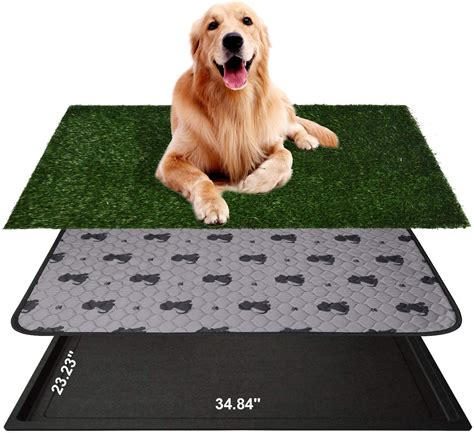how to train dog to pee on fake grass.aspx Image