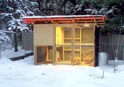 How to build a chicken coop for cold climates Image