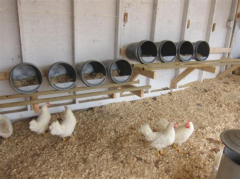 How to build a chicken roost or roosting rod Image