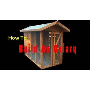 How to build an aviary secret codes