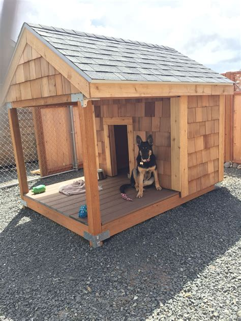 How to build an outdoor dog house Image