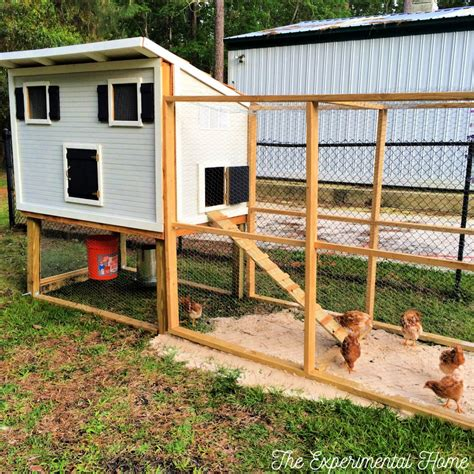How to build chicken coop and run Image