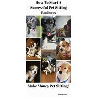 Coupon for how to create a successful pet business video package