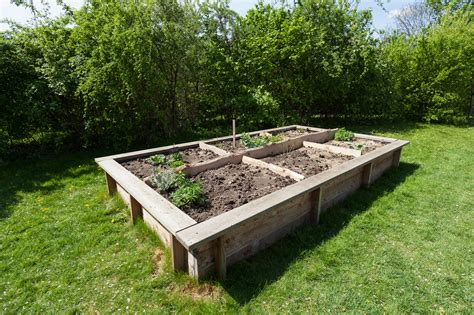 How to do a raised garden bed Image