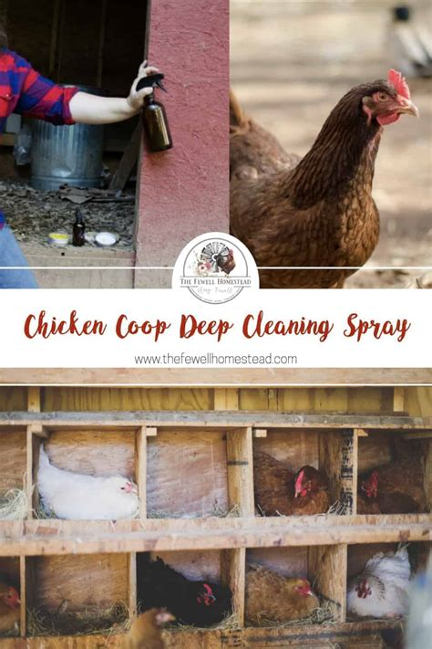 How to make chicken coop cleaner Image